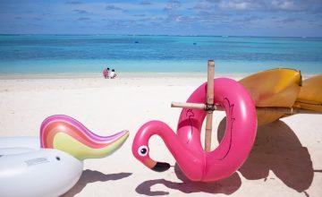 Wij wensen iedereen een fijne vakantie toe!